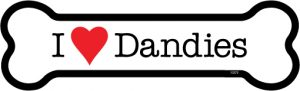 I Love Dandies - Bone Shaped Magnet-0
