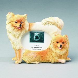 Pomeranian Photo Frame-0