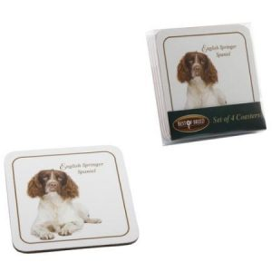 Springer Spaniel - Best of Breed Coasters-0