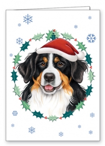Bernese Mountain Dog - Xmas Card-0