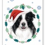 Border Collie – Xmas  Card-0