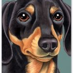 Dachshund (Black) - Blank Card-0