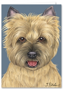 Cairn Terrier - Blank Card-0