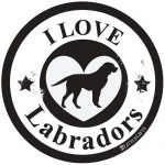 I Love Labradors - Circle Car Magnet-0