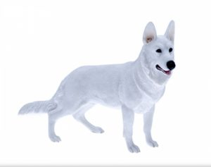 White Swiss Shepherd Dog Figurine -0
