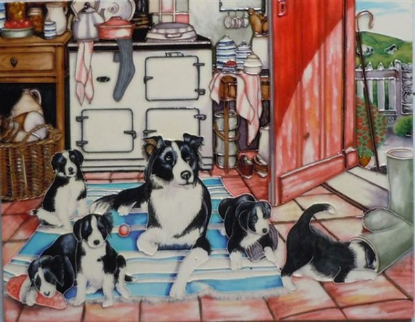 Border Collie with Pups Tile-0