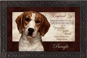Beagle Silk Reflections Indoor/Outdoor Mat-0