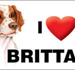 I (heart) my Brittany – Large Waterproof Magnet-0