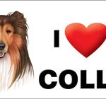 I (heart) my Collie Large Waterproof Magnet-0