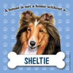Shetland Sheepdog - Fridge Magnet-0