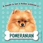 Pomeranian – Fridge Magnet-0