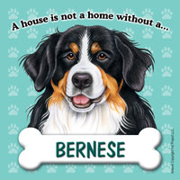 Bernese Fridge Magnet-0