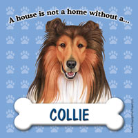 Collie - Fridge Magnet-0