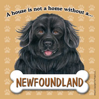 Newfoundland Fridge Magnet-0