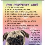Pug Property Laws - Hanging Mini Scroll-0