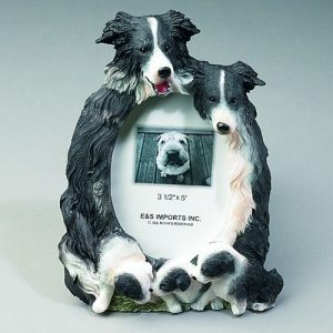 Border Collie Photo Frame-0