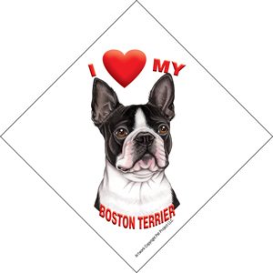 I (heart) my Boston Terrier Suction Sign-0