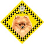 Pom (taxi) Suction Sign-0