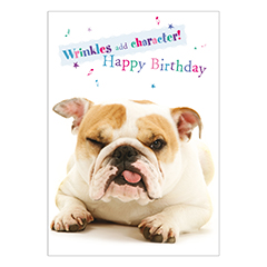 Birthday Bulldog – Soundchip Card-0