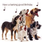 Dog Songs - Birthday Card-0