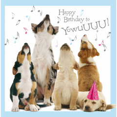 Howling Pups – Birthday Card-0