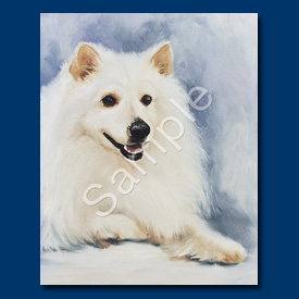 American Eskimo- 6 pack Note Cards--0