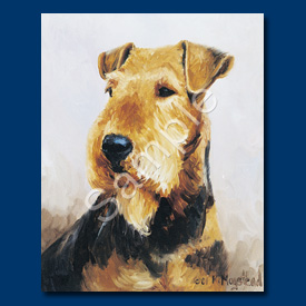 Airedale Terrier- 6 pack Note Cards-0