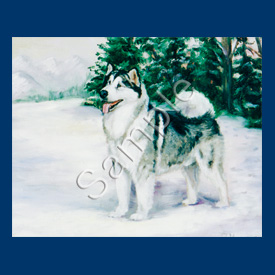 Alaskan Malemute- 6 pack Note Cards--0