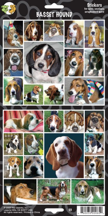 Basset Hound - Stickers-0