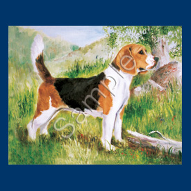 Beagle- 6 pack Note Cards--0