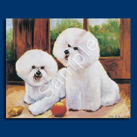 Bichon Frise- 6 pack Note Cards-0
