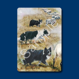 Border Collie - Deck of Playing Cards-0