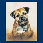 Border Terrier- 6 pack Note Cards-0