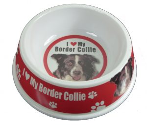 Border Collie Feeding Bowl-0