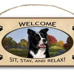 Border Collie - Welcome Hanging Sign-0