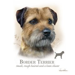 Border Terrier - Blank Card-0