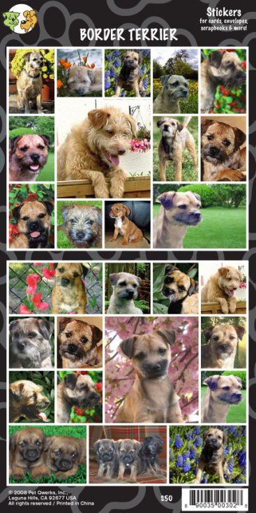 Border Terrier - Stickers-0