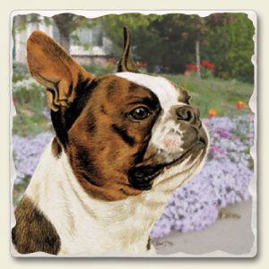 Boston Terrier - Tumbled Stone Magnet-0