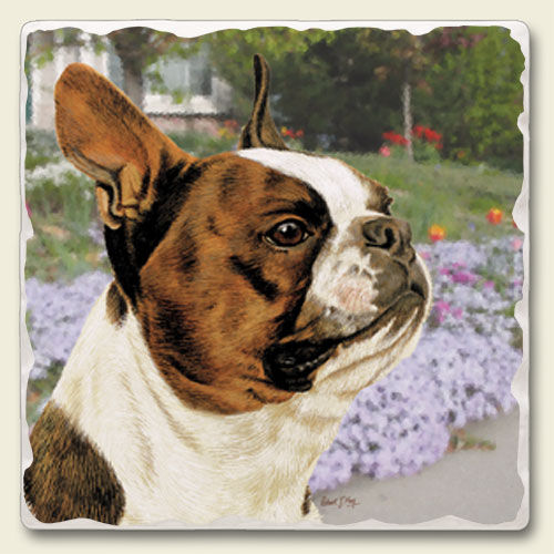 Boston Terrier – Tumbled Stone Magnet-0