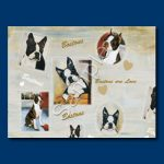 Boston Terrier - Gift Wrap paper-0