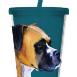 Boxer - 500ml Insulated Cup with Straw-0