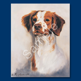 Brittany Spaniel - 6 pack Note Cards-0