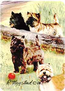 Cairn Terrier - Deck of Playing Cards-0