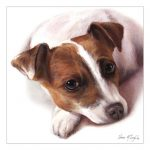 Jack Russell –  Watercolour Blank Card-0