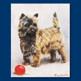 Cairn Terrier- 6 pack Note Cards-0