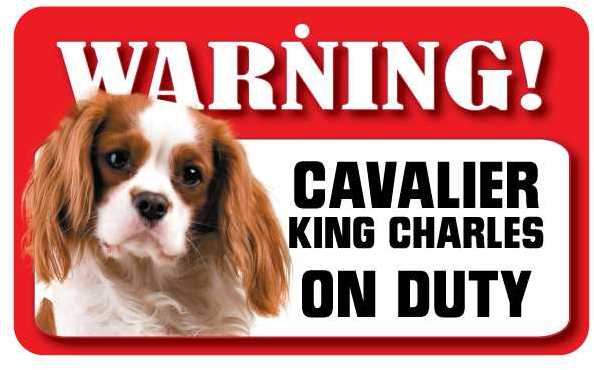 Cavalier King Charles Spaniel Warning Sign-2127