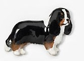 Cavalier King Charles Hand Painted Pin tri colour-0