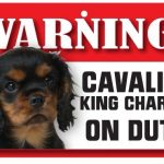 Cavalier King Charles Spaniel Warning Sign-0