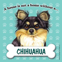 Chihuahua (Black & Tan) - Fridge Magnet-0