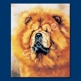 Chow Chow (red) - 6 pack Note Cards-0